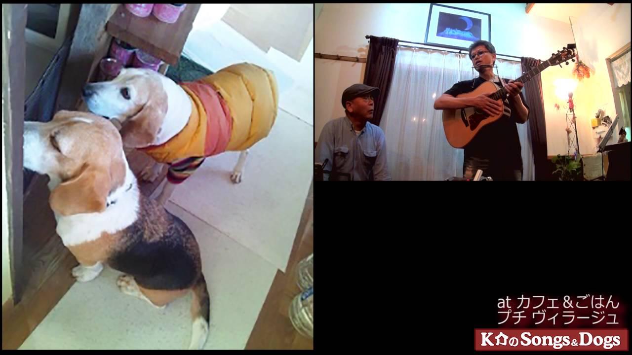 120th: K介のSongs&Dogs週末はミュージシャン