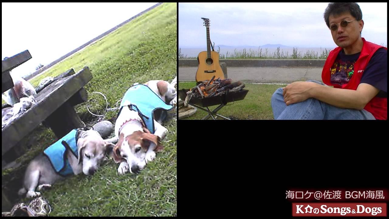 121th: K介のSongs&Dogs週末はミュージシャン