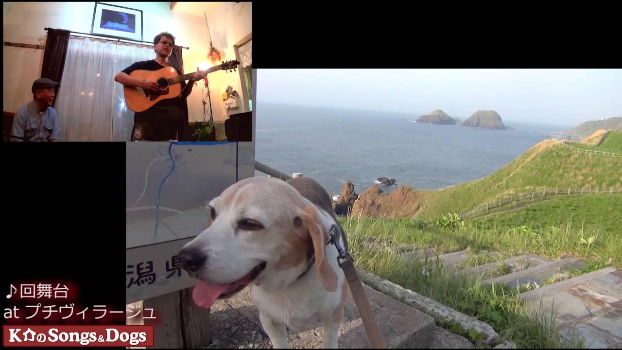 125th: K介のSongs&Dogs週末はミュージシャン
