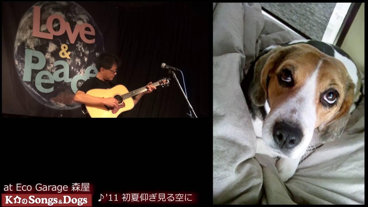 128th: K介のSongs&Dogs週末はミュージシャン