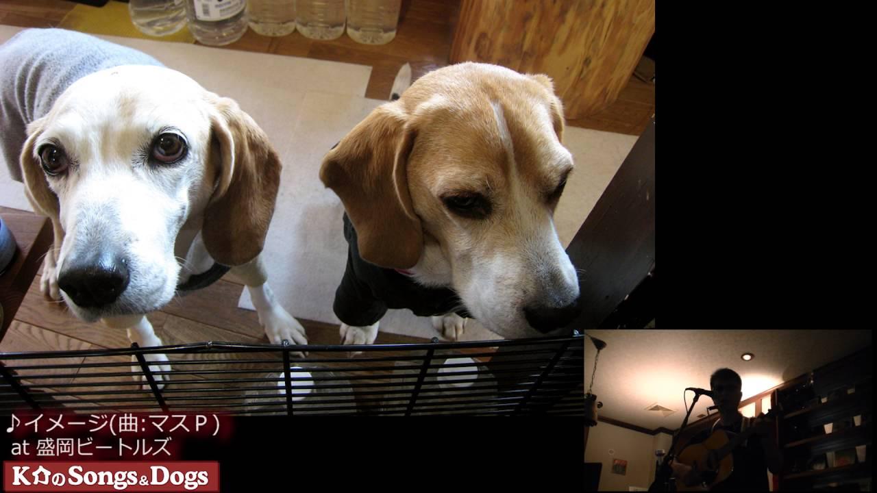 131th: K介のSongs&Dogs週末はミュージシャン