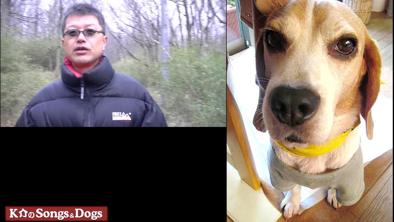 154th: K介のSongs&Dogs週末はミュージシャン