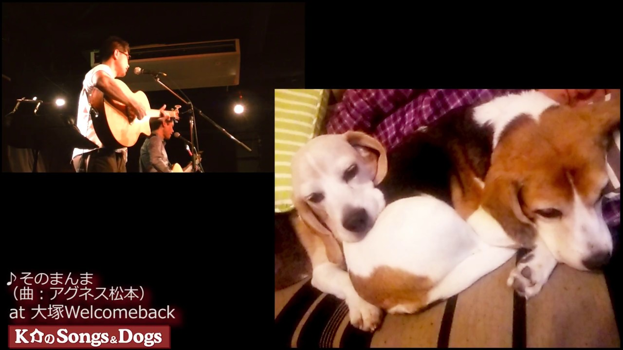 160th: K介のSongs&Dogs週末はミュージシャン