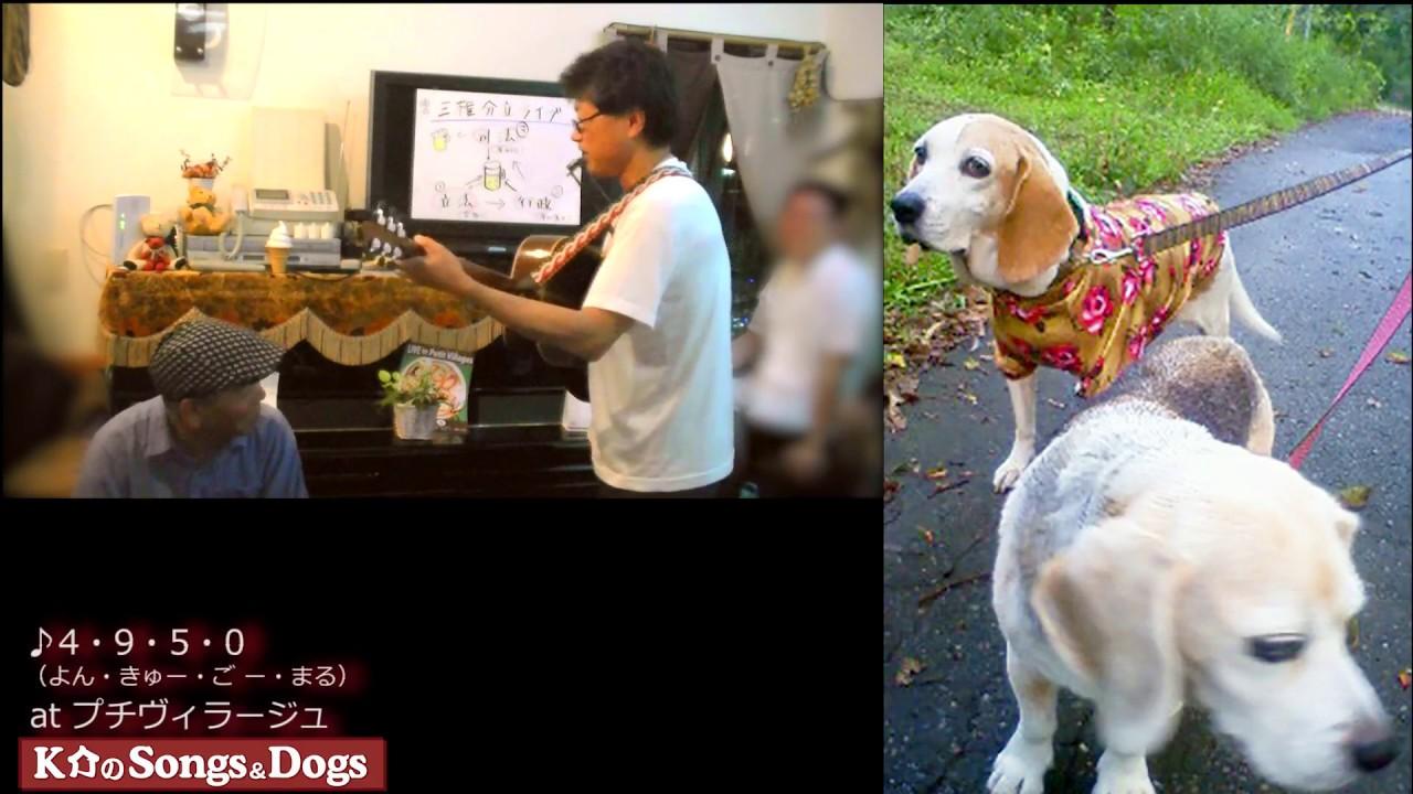 180th: K介のSongs&Dogs週末はミュージシャン