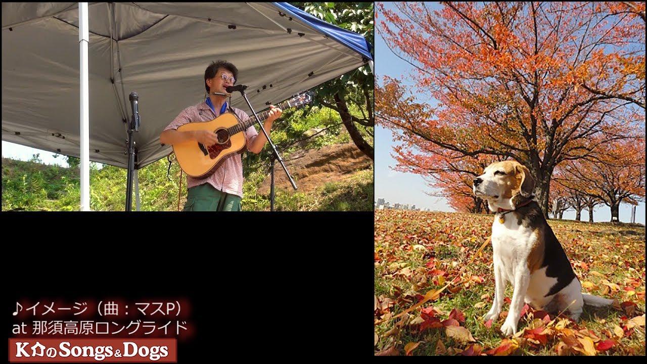 186th: K介のSongs&Dogs週末はミュージシャン