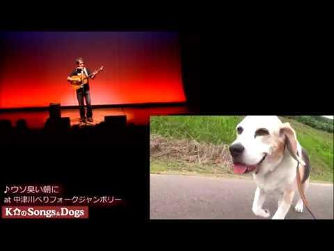192th: K介のSongs&Dogs週末はミュージシャン