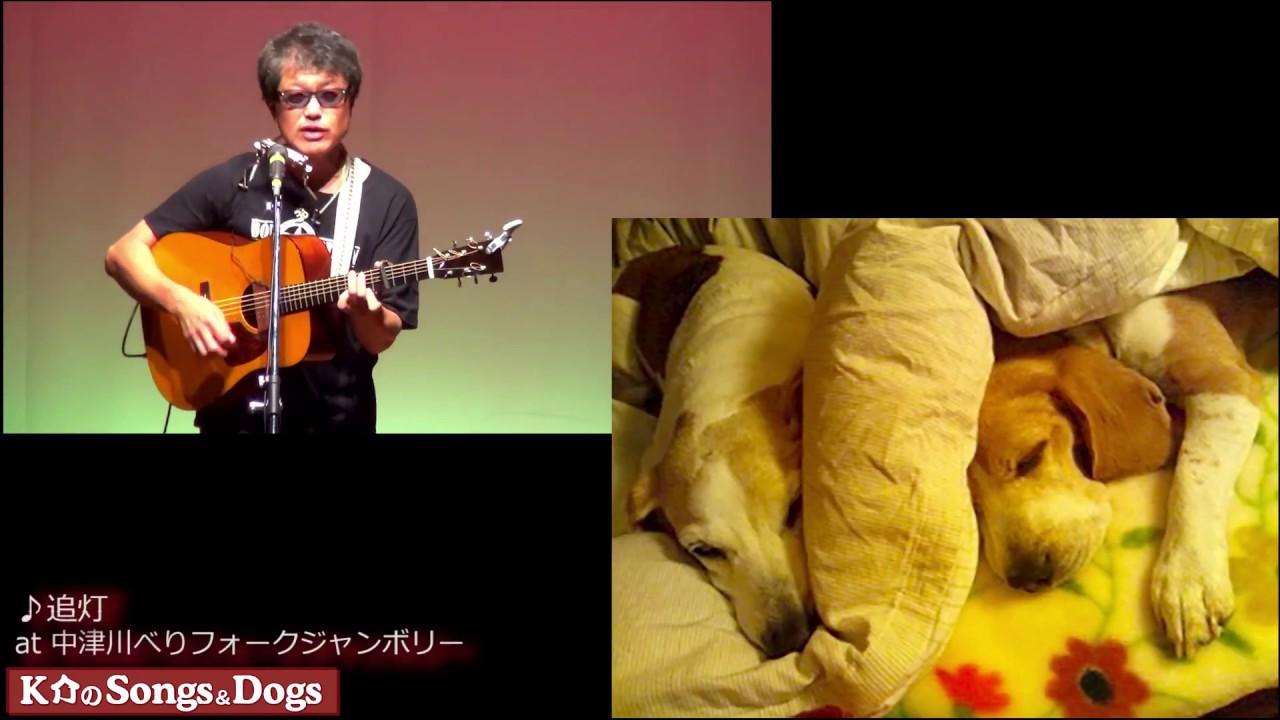 195th: K介のSongs&Dogs週末はミュージシャン