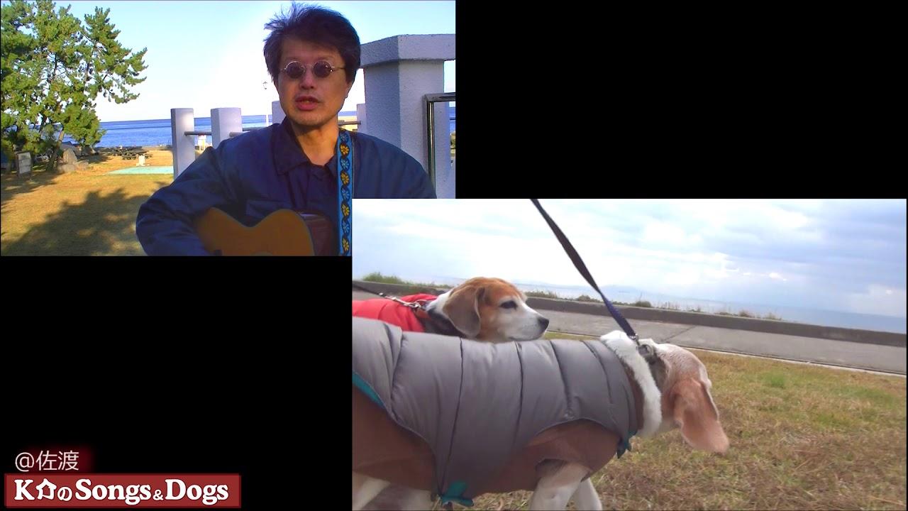 197th: K介のSongs&Dogs週末はミュージシャン