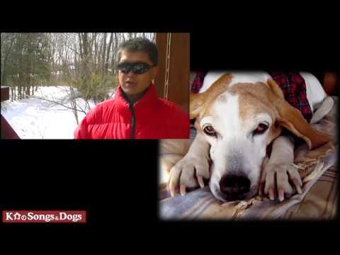 204th: K介のSongs&Dogs週末はミュージシャン