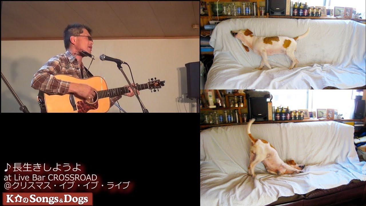 210th: K介のSongs&Dogs週末はミュージシャン