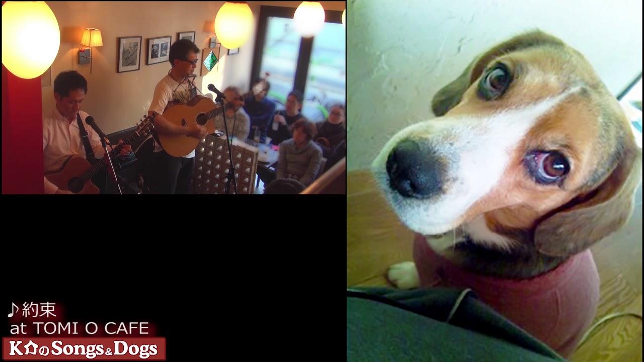 220th: K介のSongs&Dogs週末はミュージシャン