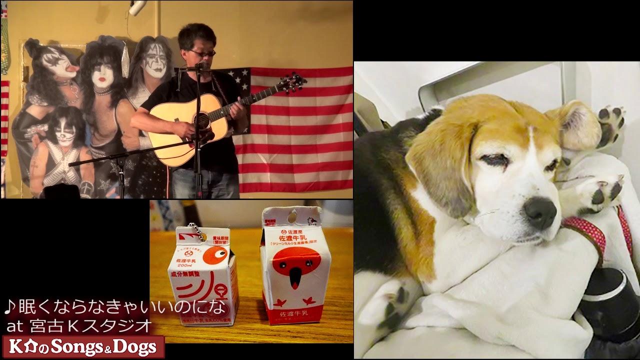 225th: K介のSongs&Dogs週末はミュージシャン