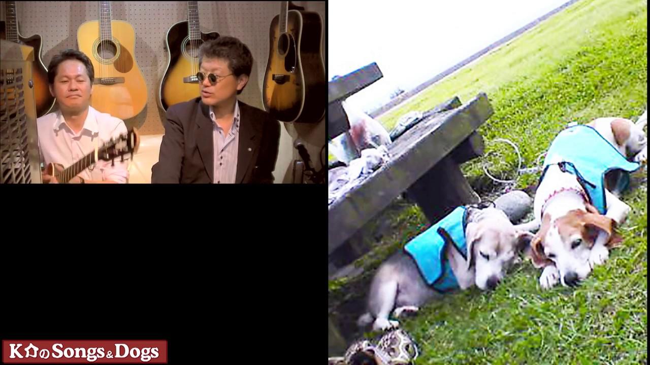 227th: K介のSongs&Dogs週末はミュージシャン