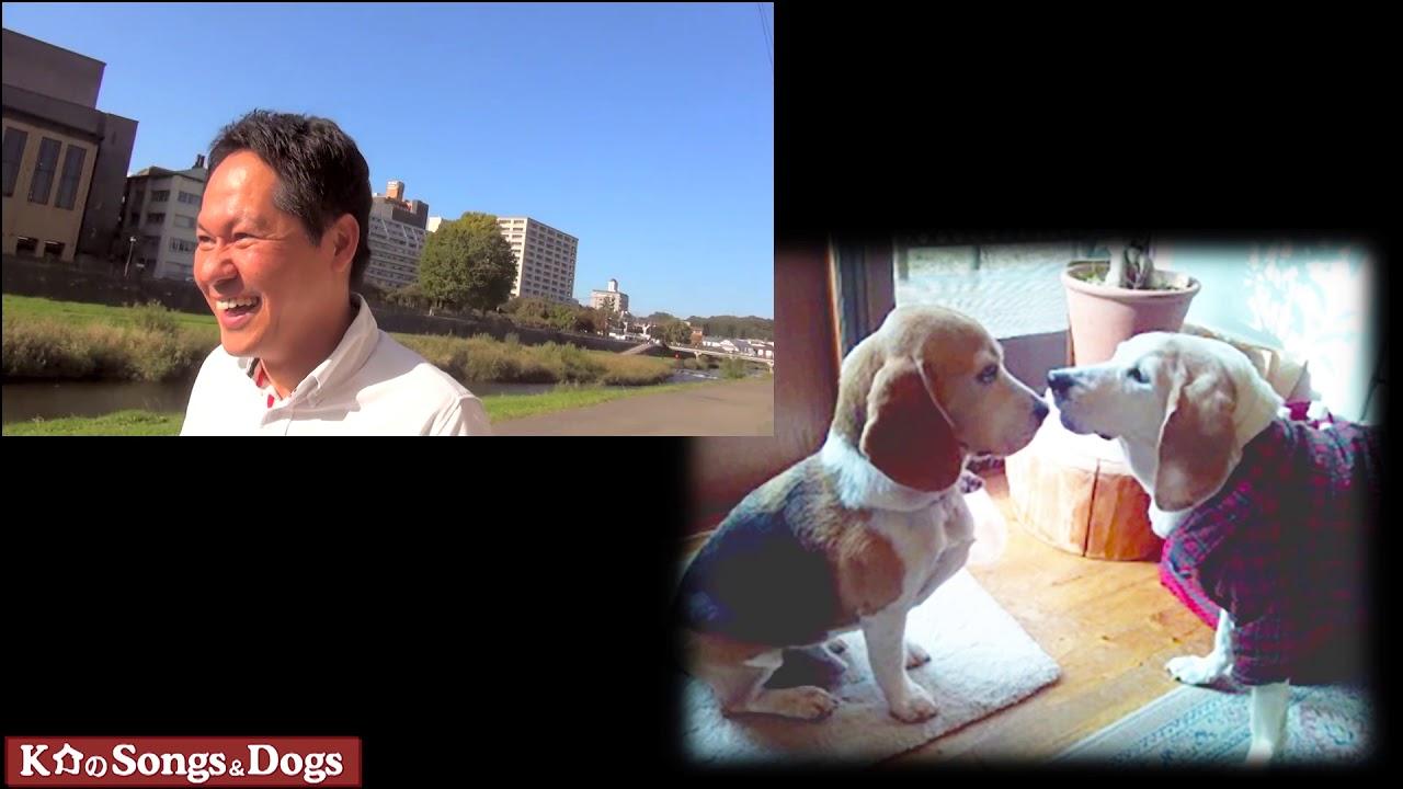 248th: K介のSongs&Dogs週末はミュージシャン