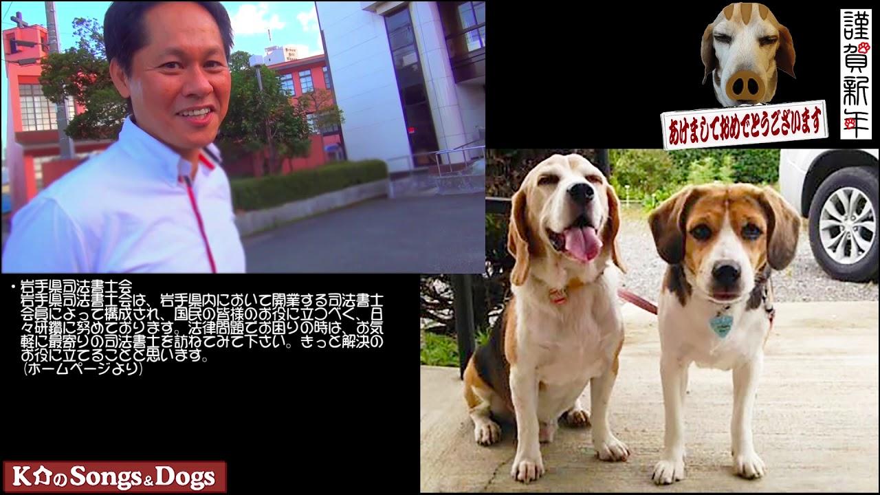 253th: K介のSongs&Dogs週末はミュージシャン