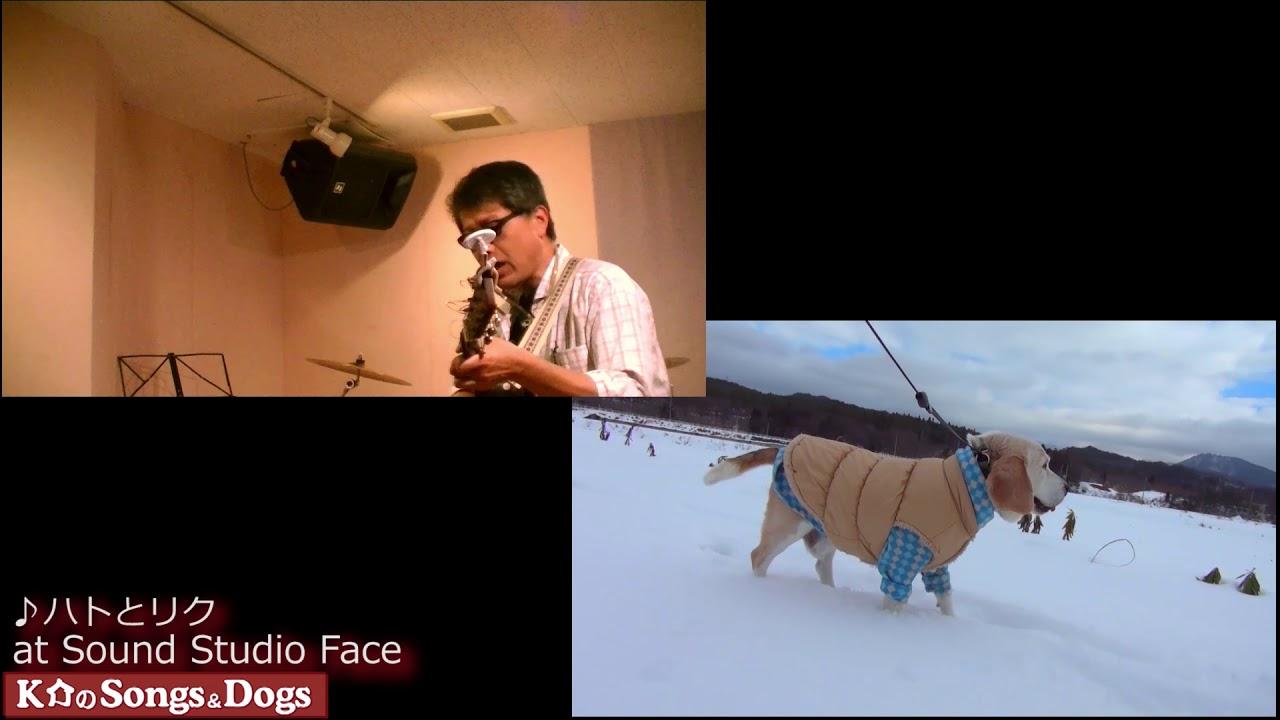 258th: K介のSongs&Dogs週末はミュージシャン