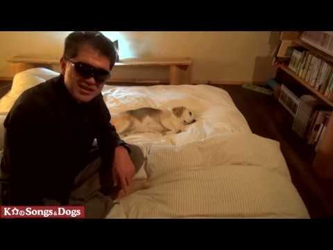 266th: K介のSongs&Dogs週末はミュージシャン