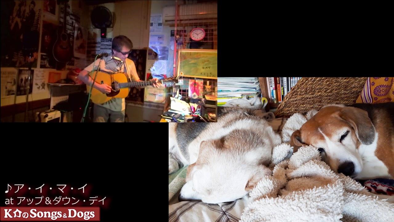 270th: K介のSongs&Dogs週末はミュージシャン