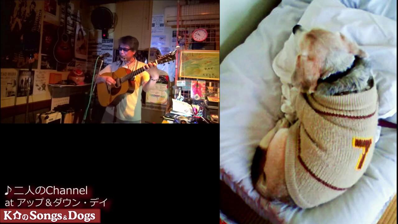 274th: K介のSongs&Dogs週末はミュージシャン