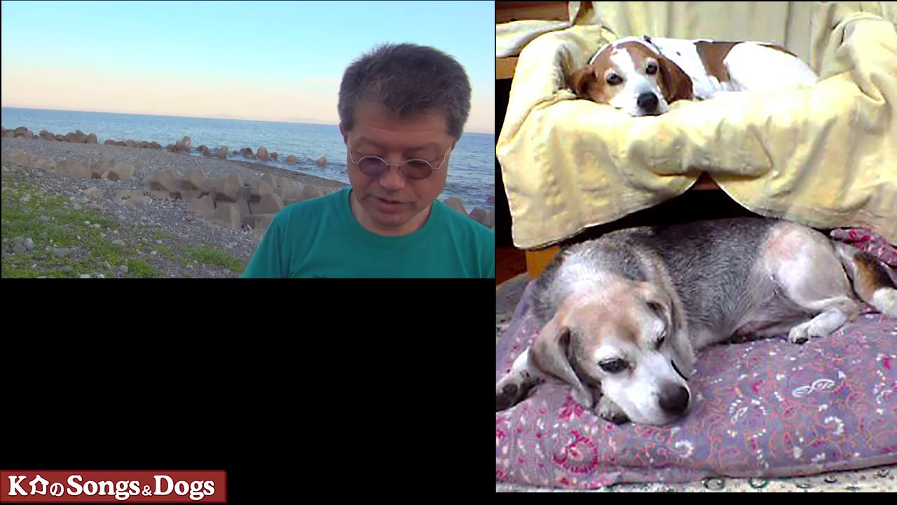 277th: K介のSongs&Dogs週末はミュージシャン