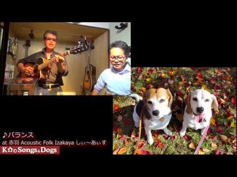 296th: K介のSongs&Dogs週末はミュージシャン