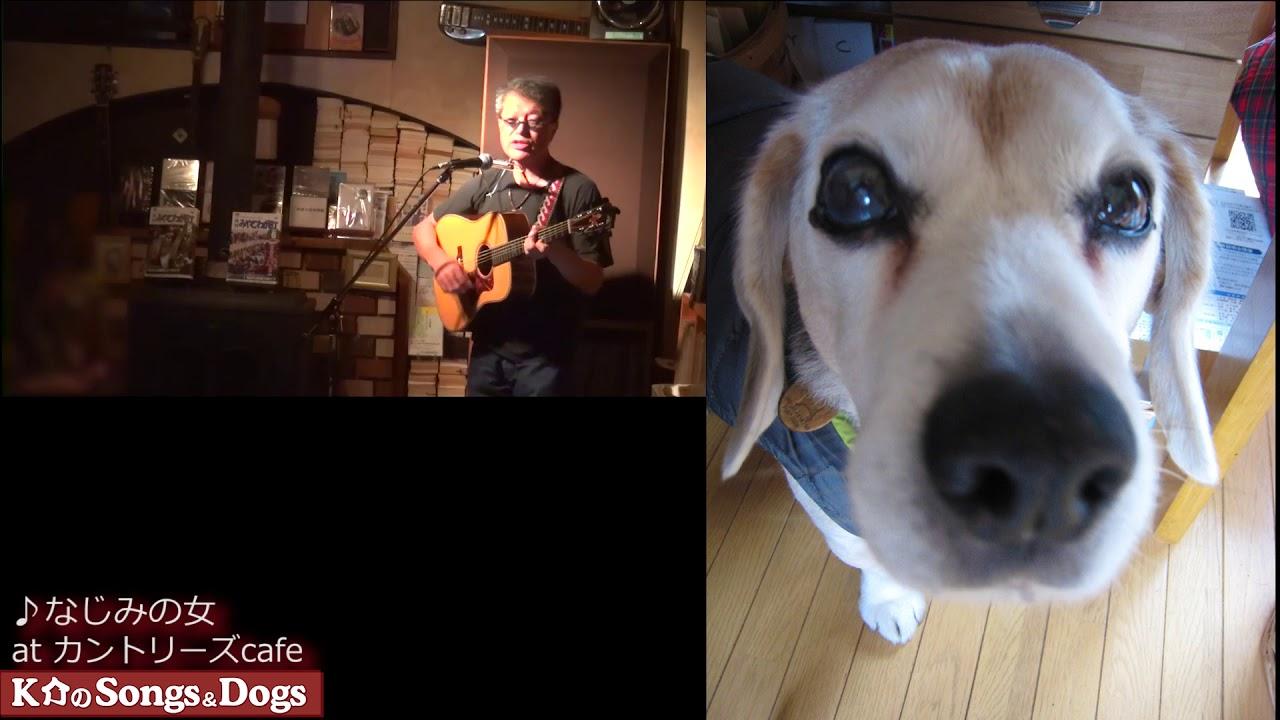 298th: K介のSongs&Dogs週末はミュージシャン