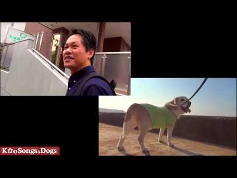 299th: K介のSongs&Dogs週末はミュージシャン