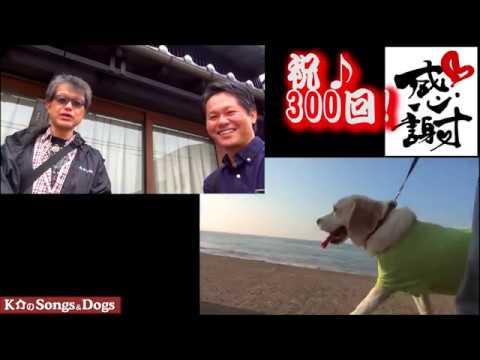 300th: K介のSongs&Dogs週末はミュージシャン