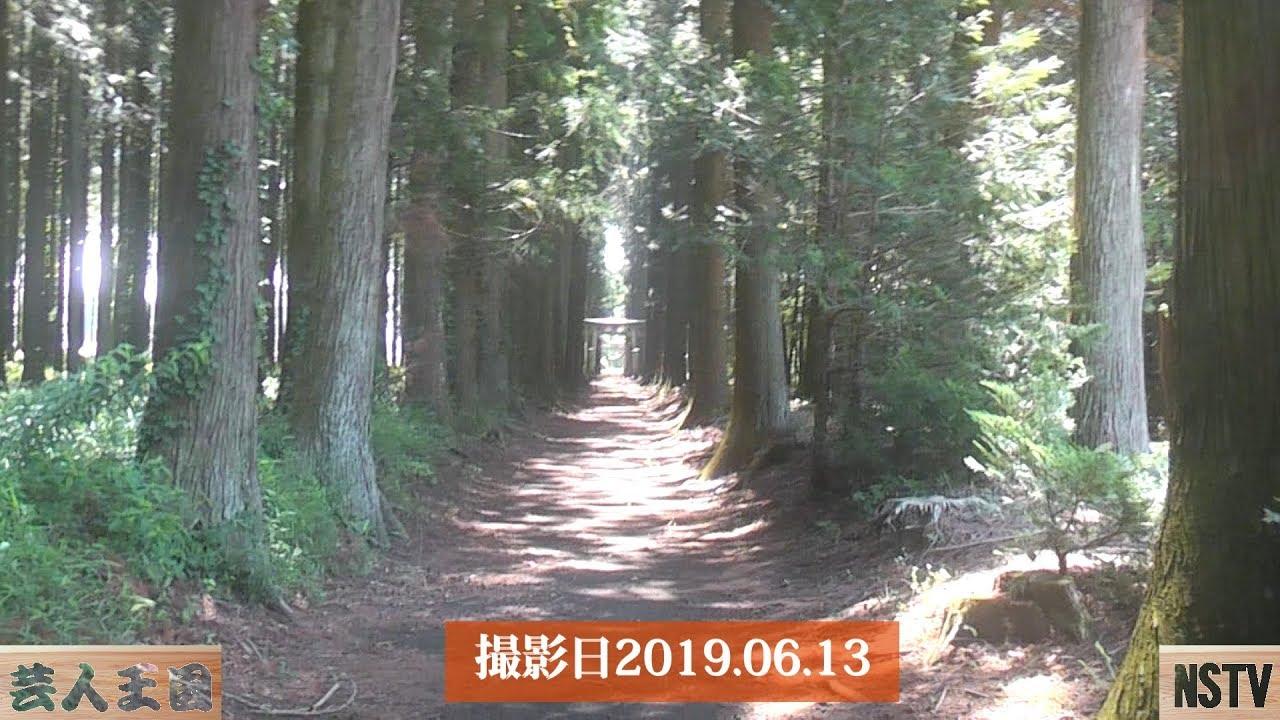 大田原6月の名木ハイキング~那須お笑いクラブ
