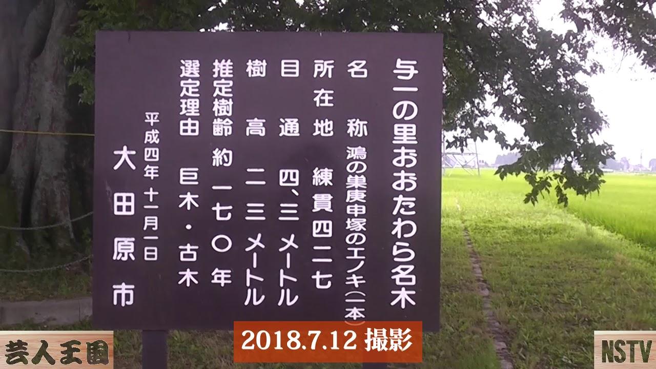大田原7月の名木ハイキング~那須お笑いクラブ