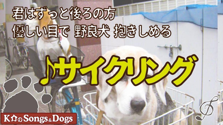 ♪サイクリング : K介のSongs&Dogs週末はミュージシャン