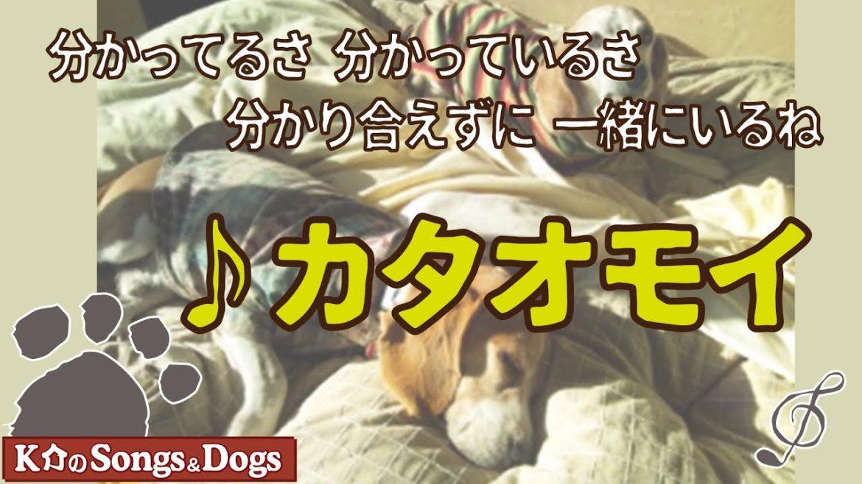 ♪カタオモイ : K介のSongs&Dogs週末はミュージシャン