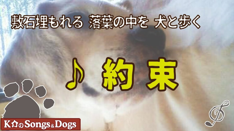 ♪約束 : K介のSongs&Dogs週末はミュージシャン