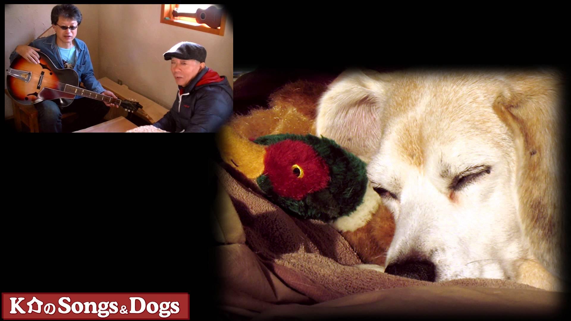 K介のSongs&Dogs週末はミュージシャン98