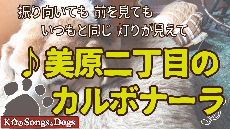 ♪美原二丁目のカルボナーラ: K介のSongs&Dogs週末はミュージシャン