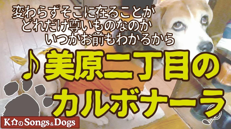 ♪美原二丁目のカルボナーラ : K介のSongs&Dogs週末はミュージシャン
