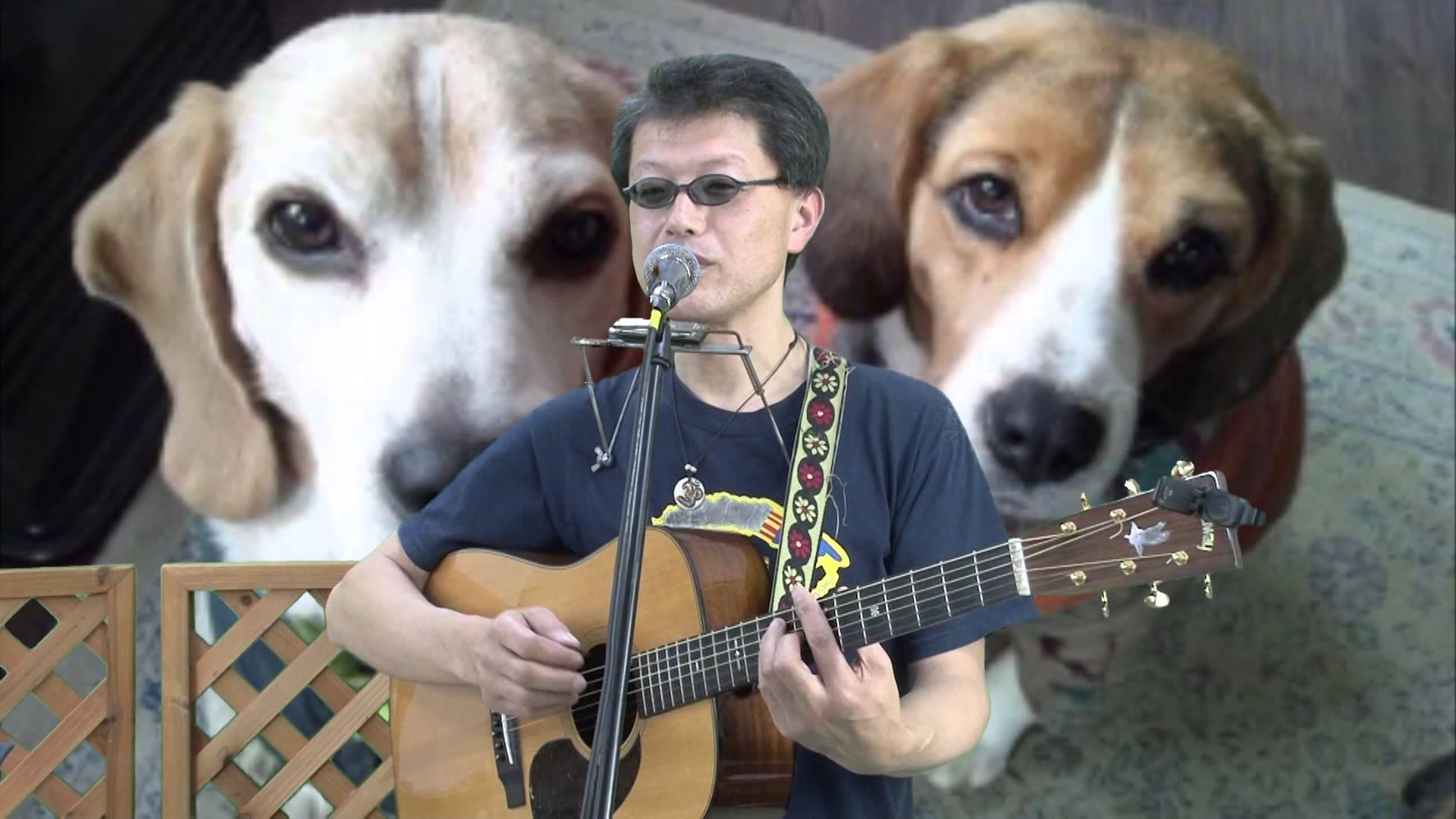 K介のSongs&Dogs週末はミュージシャン~08