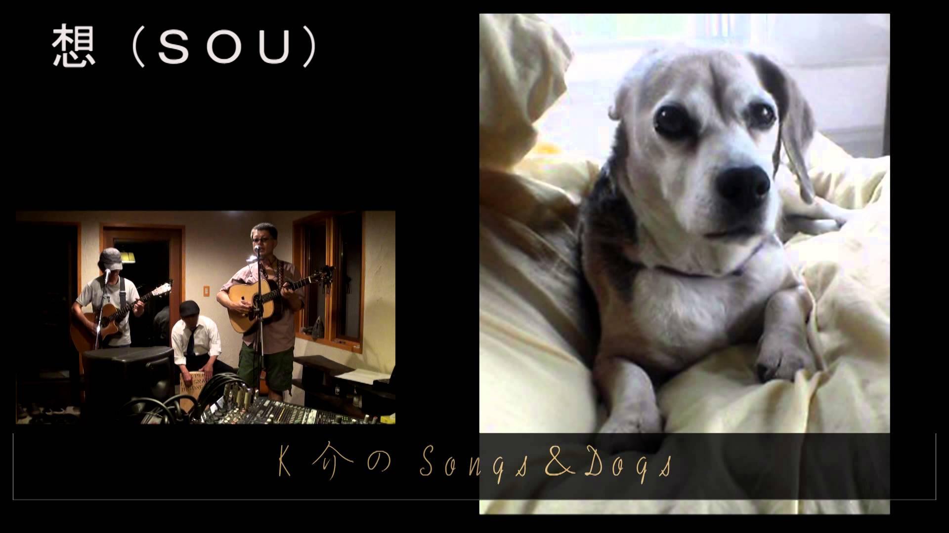 K介のSongs&Dogs週末はミュージシャン~17