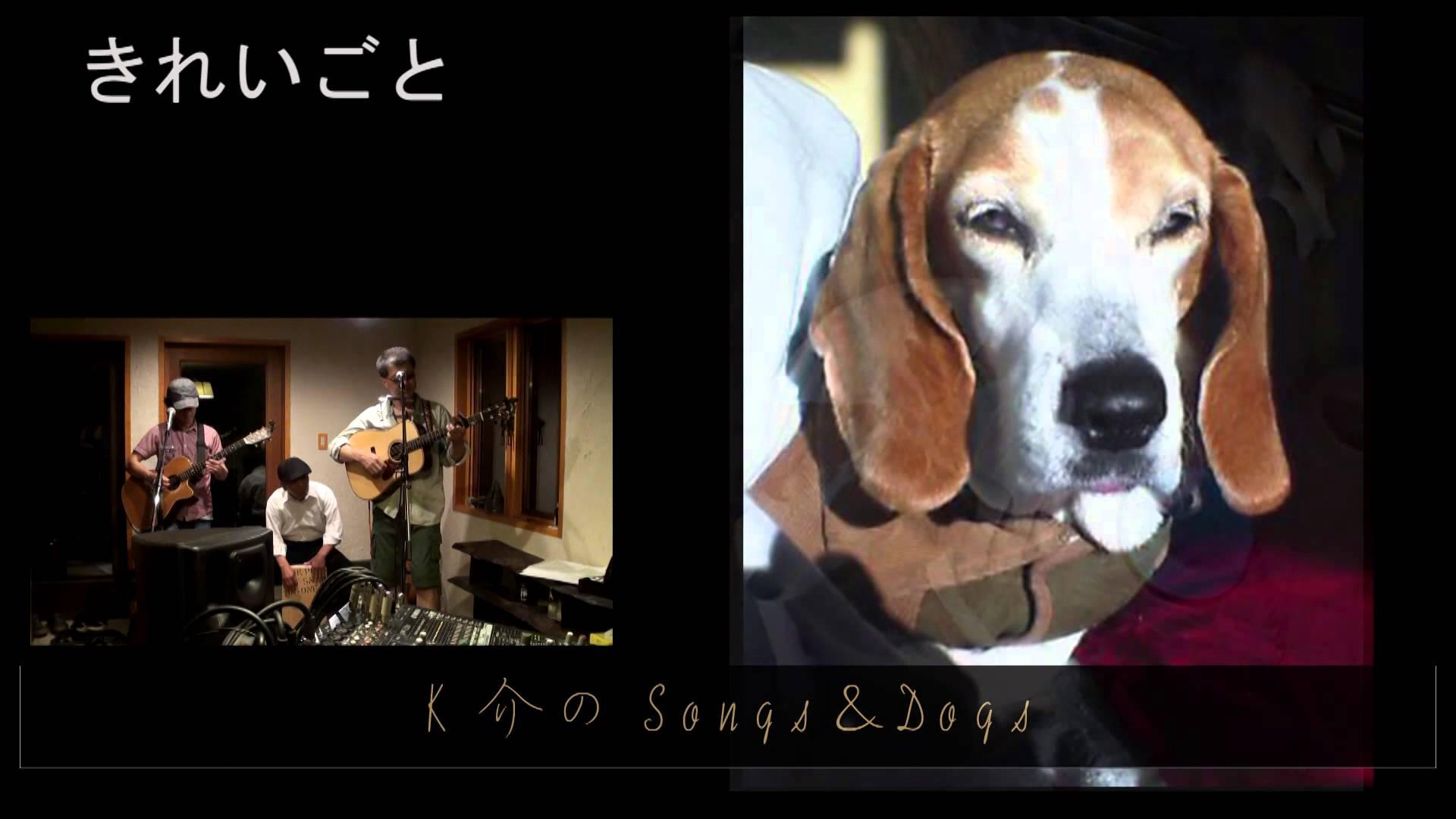 K介のSongs&Dogs週末はミュージシャン~19