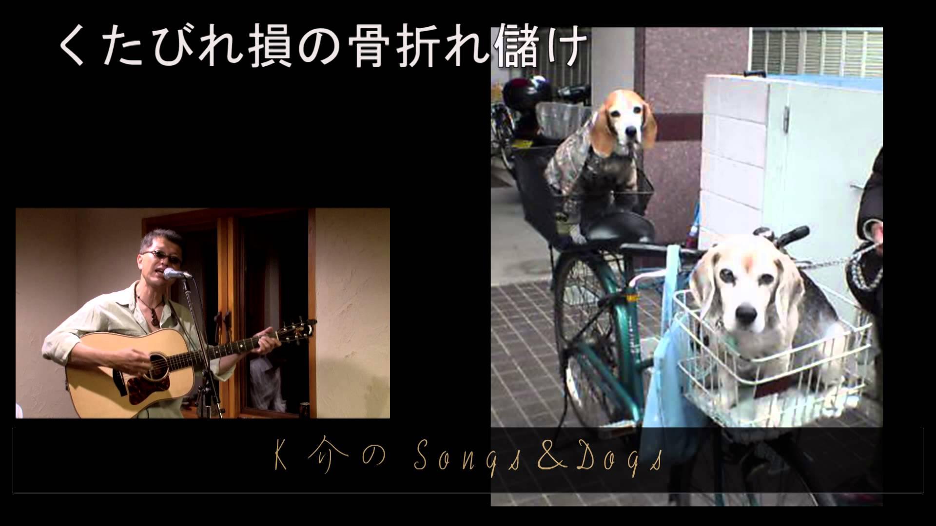 K介のSongs&Dogs週末はミュージシャン~20