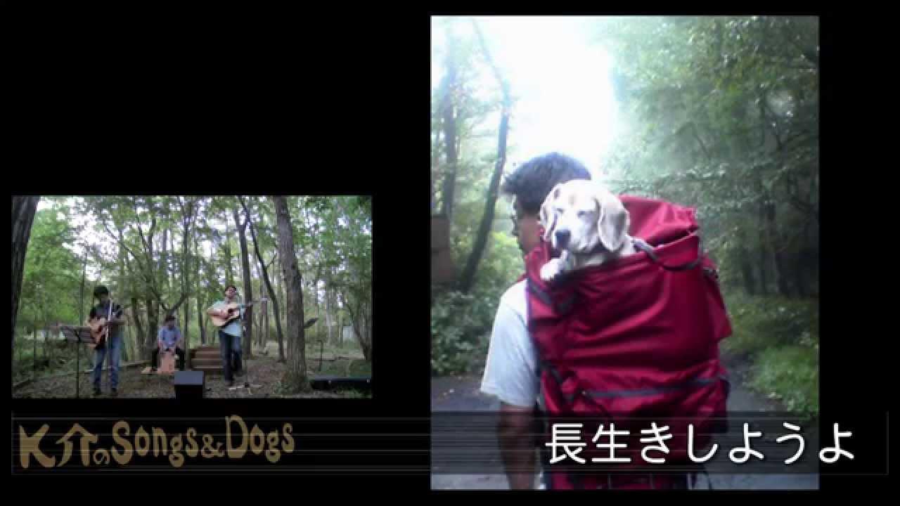 K介のSongs&Dogs週末はミュージシャン~23