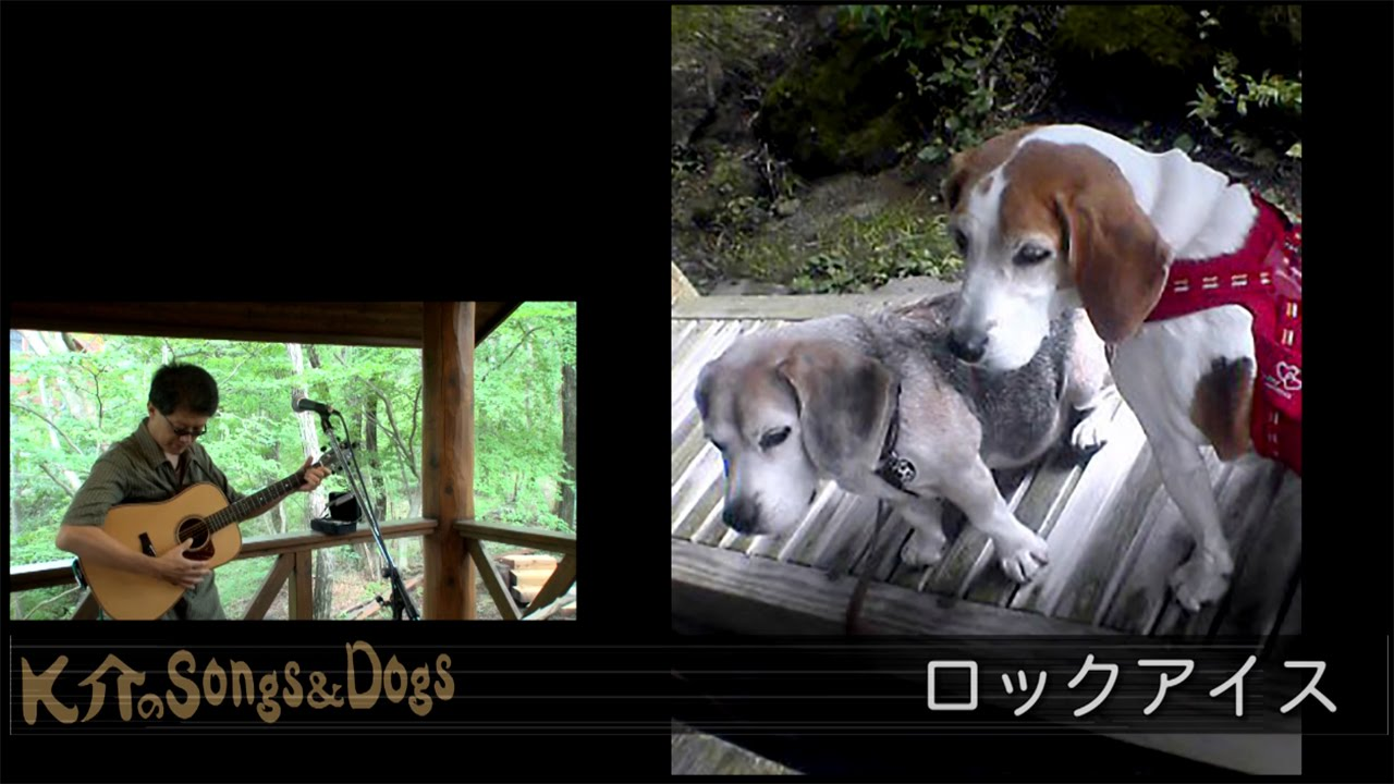 K介のSongs&Dogs週末はミュージシャン~28