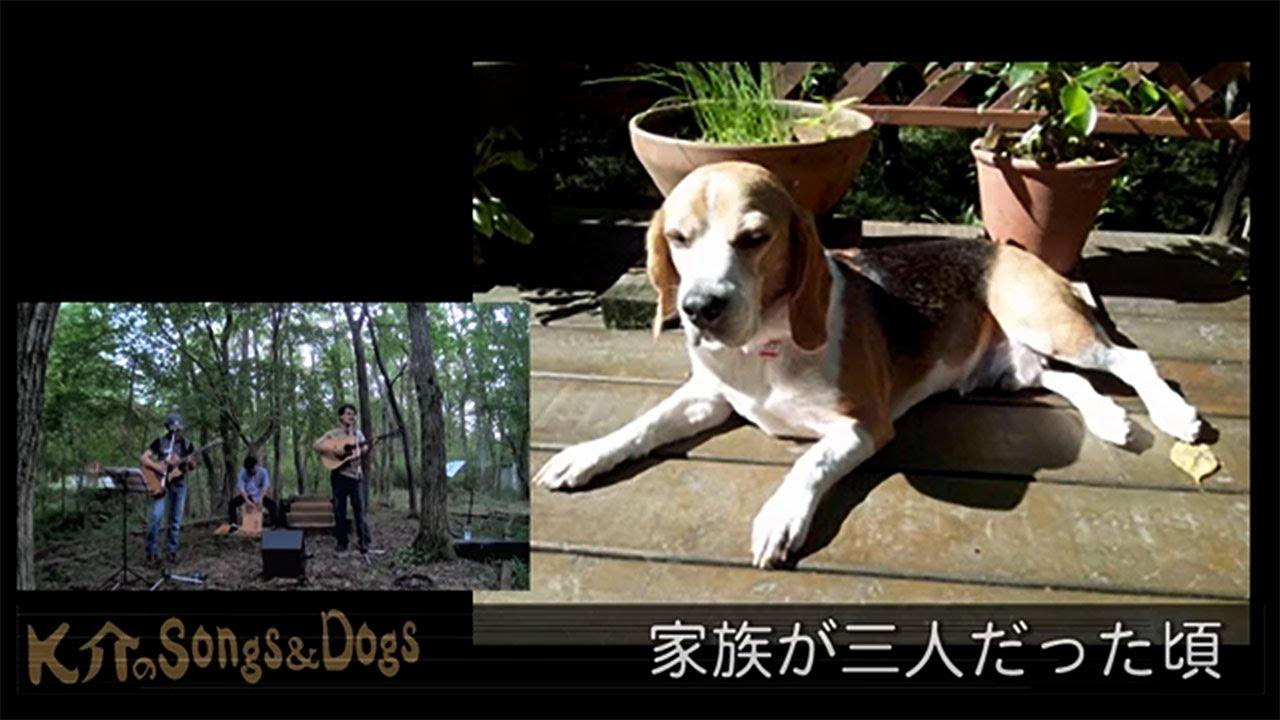 K介のSongs&Dogs週末はミュージシャン~29