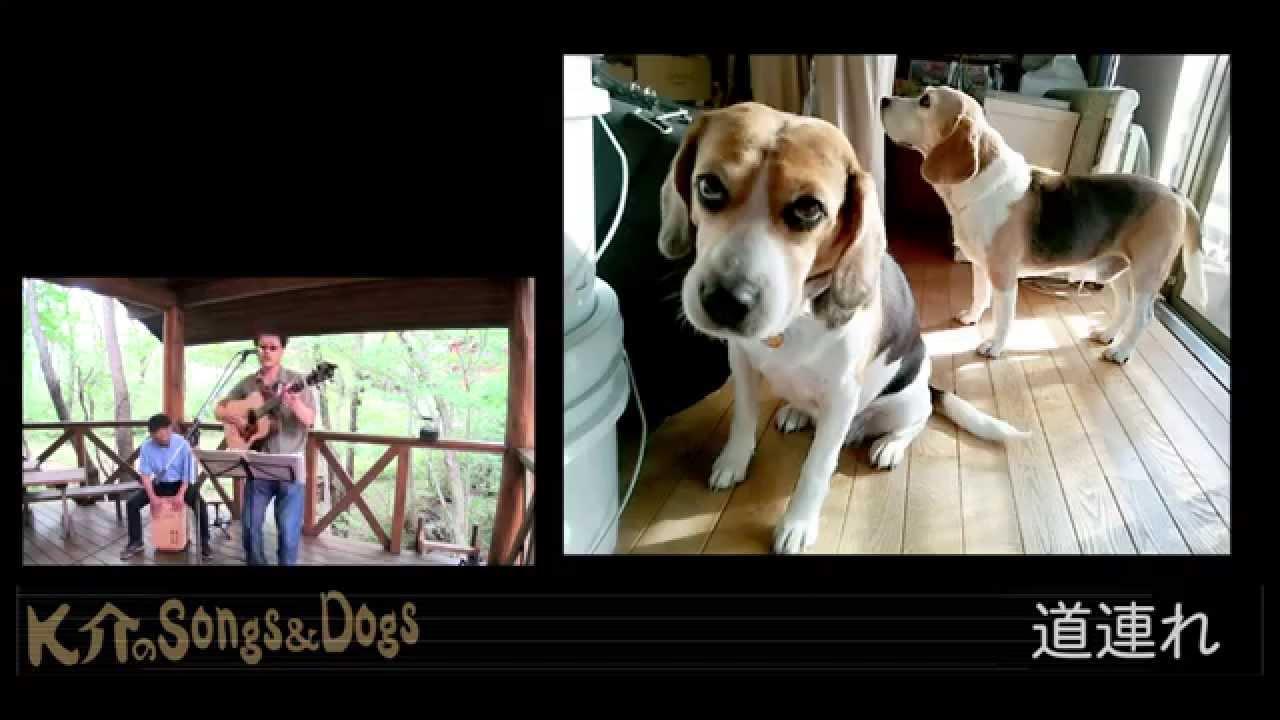 K介のSongs&Dogs週末はミュージシャン~30