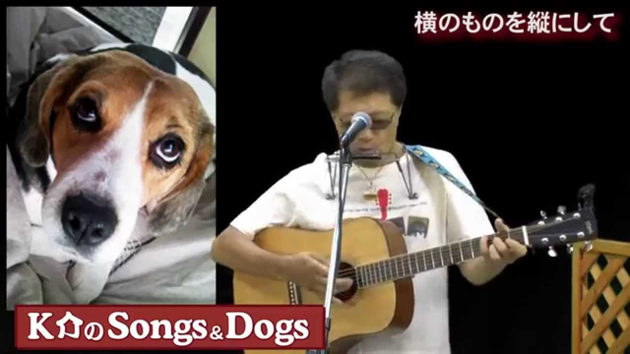 K介のSongs&Dogs週末はミュージシャン~37