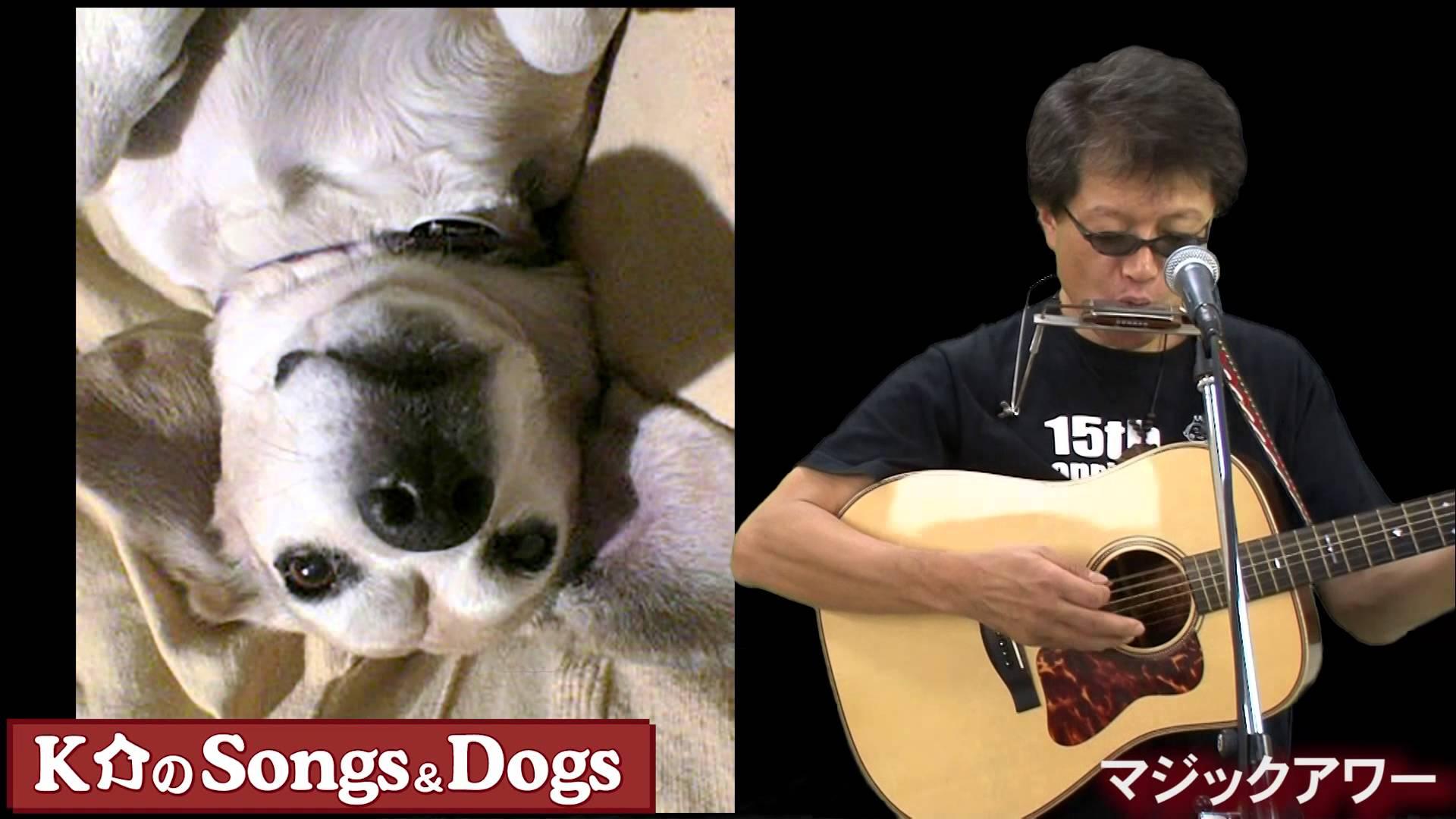 K介のSongs&Dogs週末はミュージシャン~40