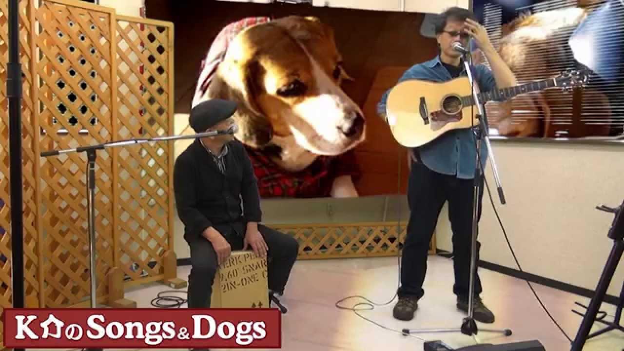 K介のSongs&Dogs週末はミュージシャン~41
