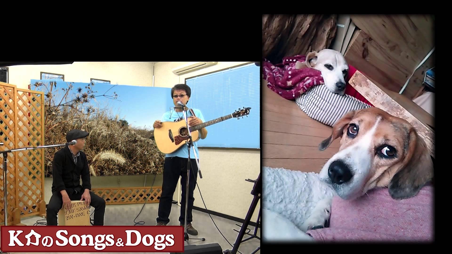 K介のSongs&Dogs週末はミュージシャン~42