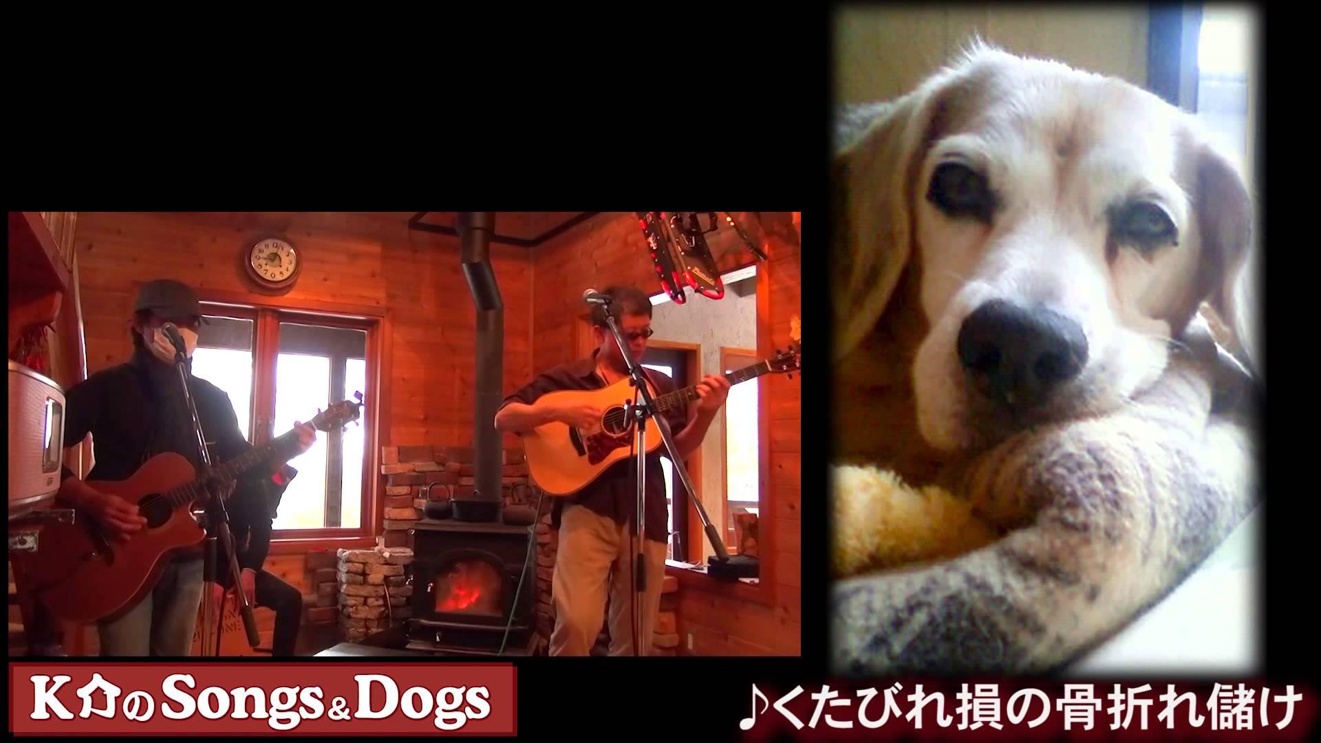 K介のSongs&Dogs週末はミュージシャン~49