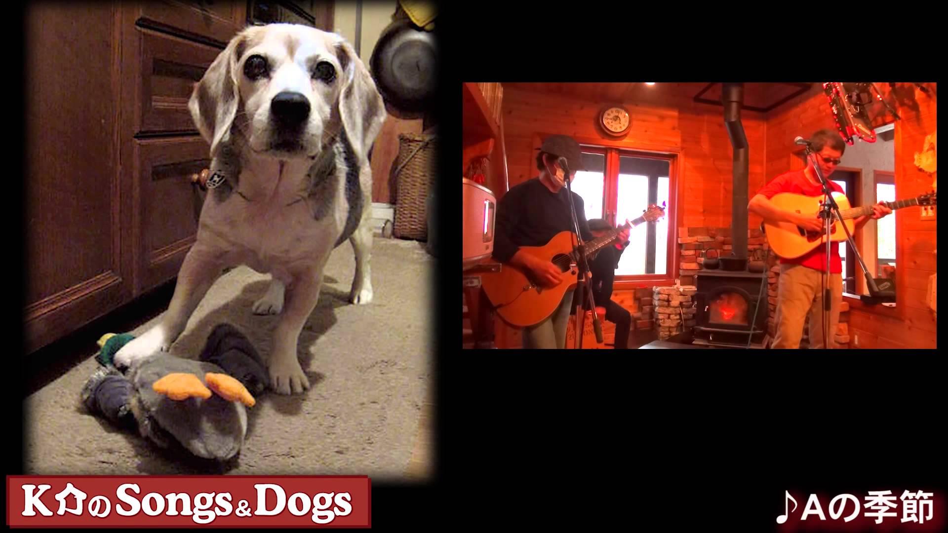 K介のSongs&Dogs週末はミュージシャン~50
